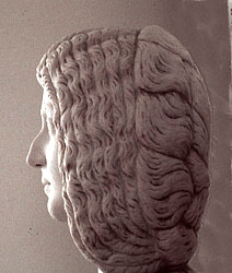 Julia Domna's hairdo--side
