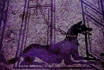 watchdog mosaic